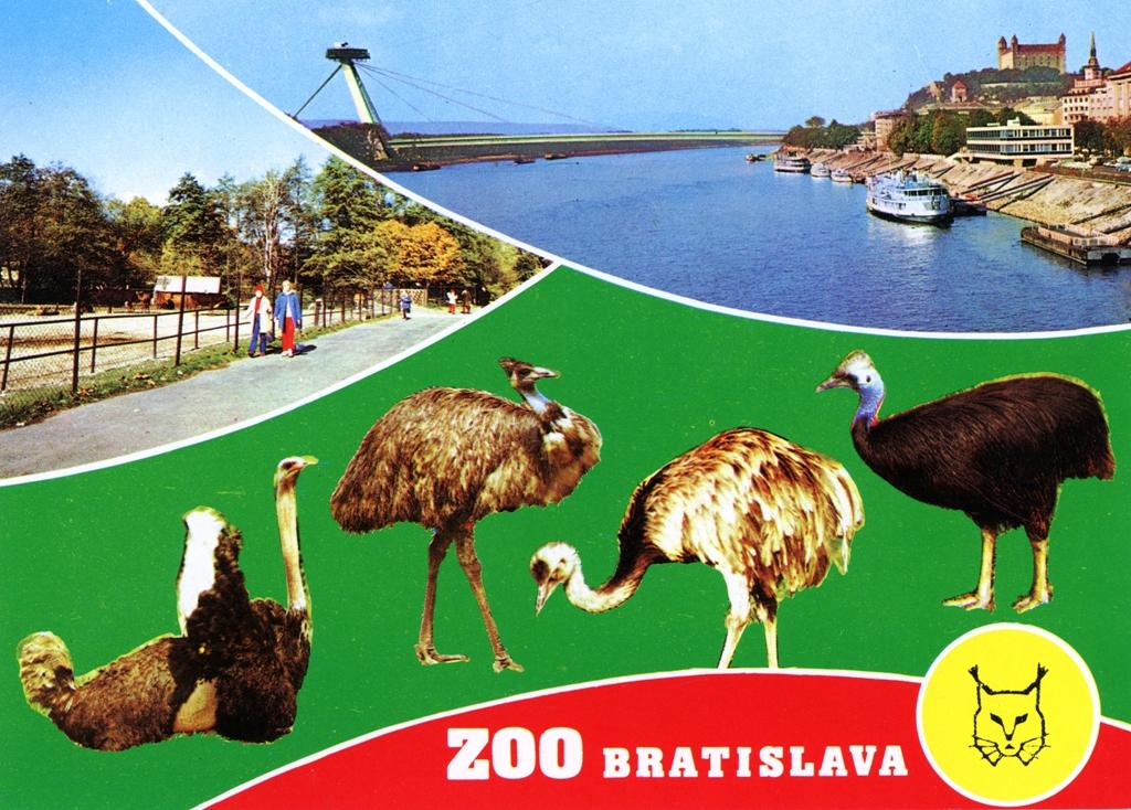 Die peinlichsten Fotografien von Bratislava
